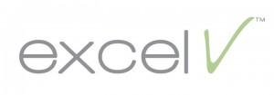 Excel-V[1]